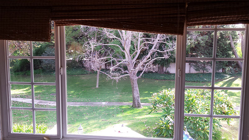 Picture of window after window cleaning in Laguna Beach by Blue Coast Window Cleaning Service.